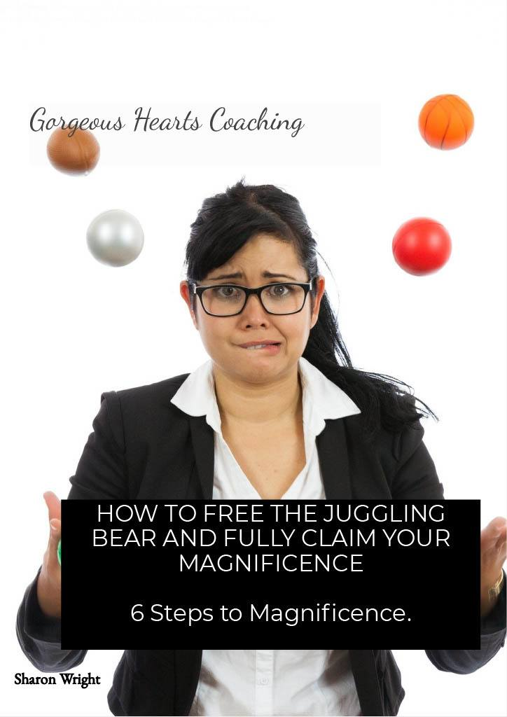 Free eBook - 6 steps to magnificence